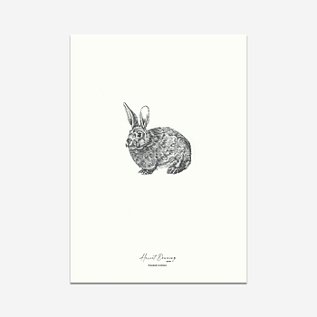 Autumn Rabbit - Print