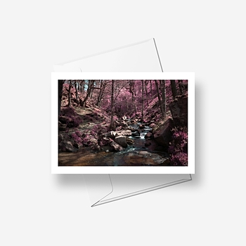 Pink Forest - Greetings card