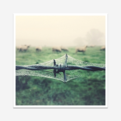 Droplet and mist - Print