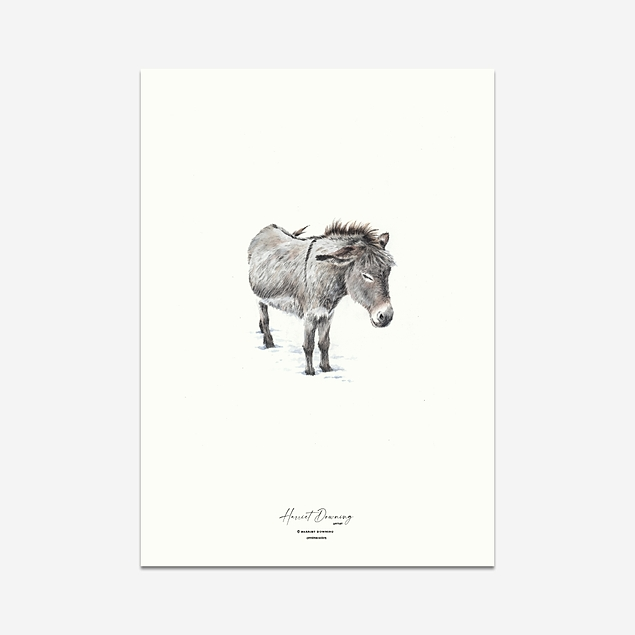 Winter Donkey (Christmas Edition) - Print