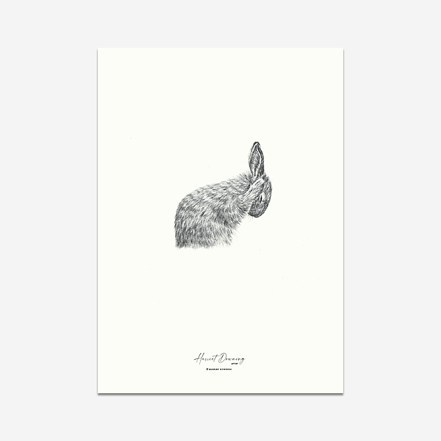Early Morning Rabbit - Print
